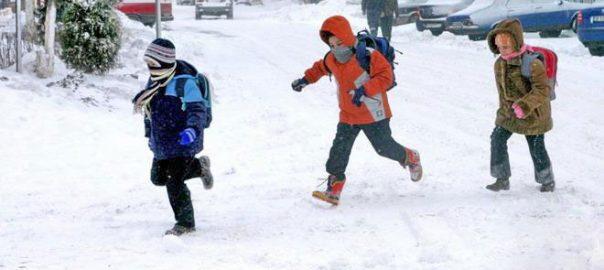 scolari iarna